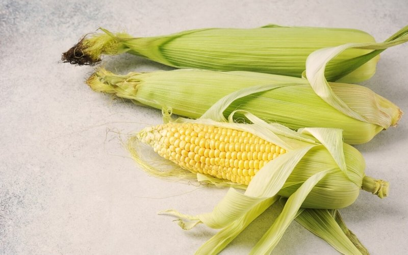 """Why are they called """"Ears"""" of Corn?"""