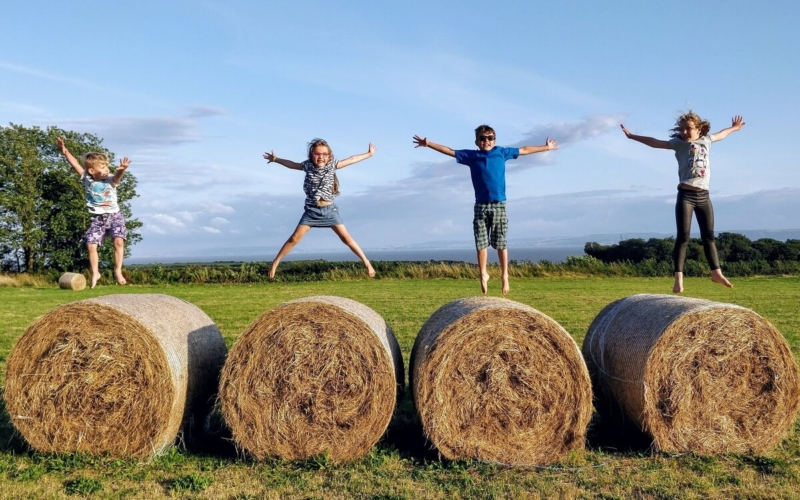 Why do the bales of hay come in different shapes?