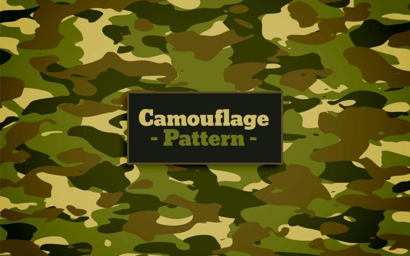 What Colour Is Camouflage?