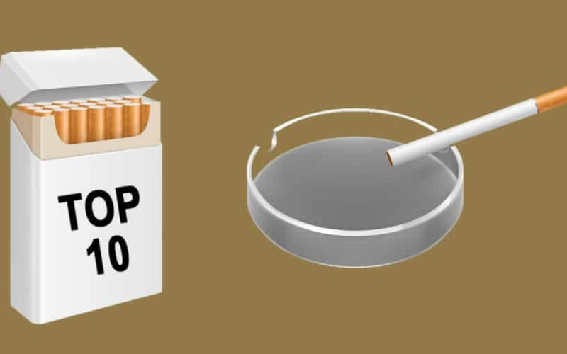 Top 10 Smokeless Tobacco Brands